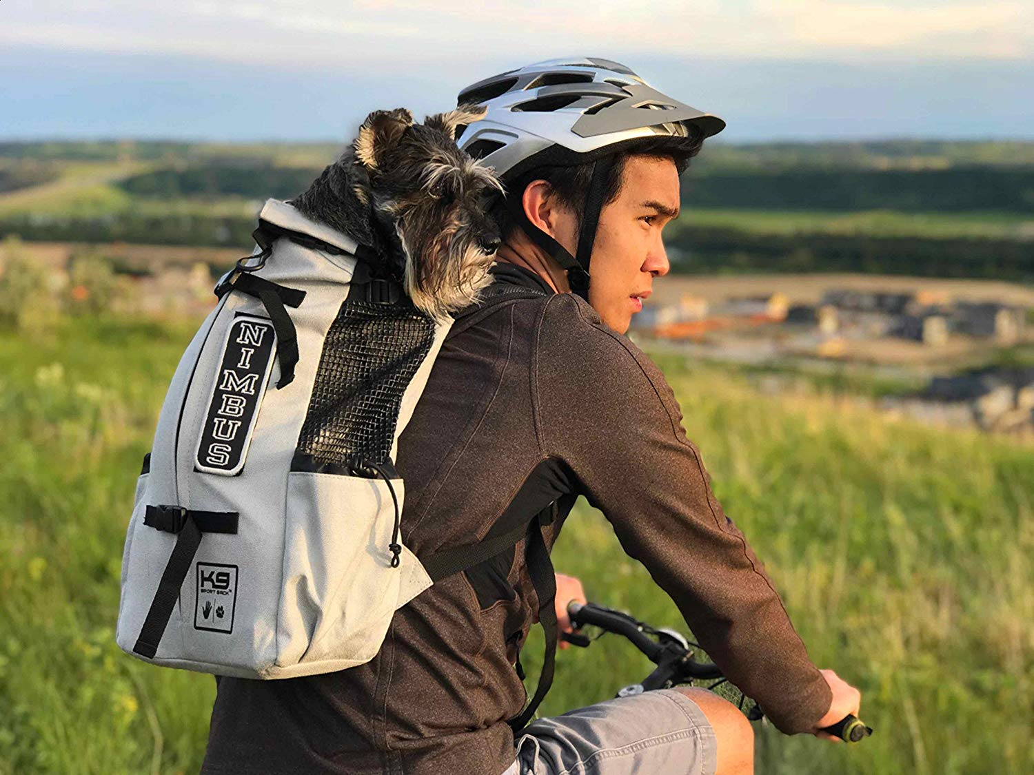 Best Dog Carrier Backpacks - Review & Guide